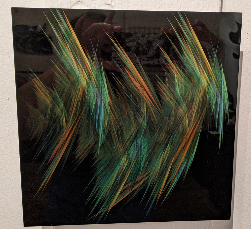 Feathers - metal print