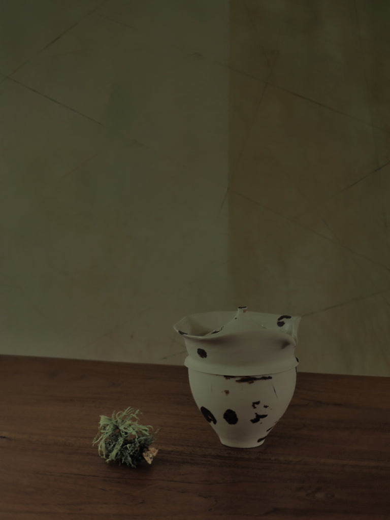 Tea Pot With Dots