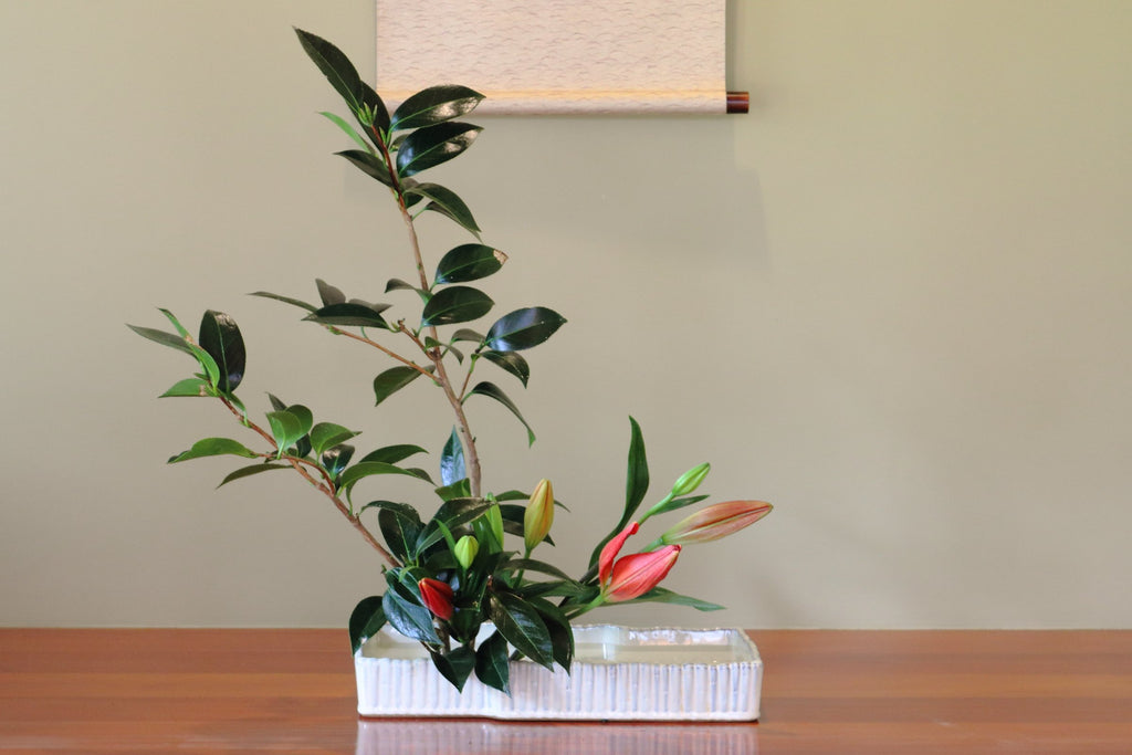 Ikebana Workshop  Japanese flower arrangement - Sunday  7th or 27th of March