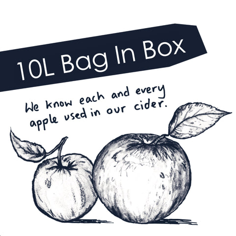 10L Bag In Box