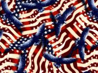 Cotton Fabric - Patriotic Flags Eagles - Beachside Knits N Quilts