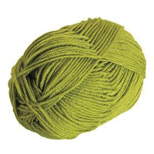 Load image into Gallery viewer, Brava Worsted Yarn - Avocado - Set of 2 Mini Skeins