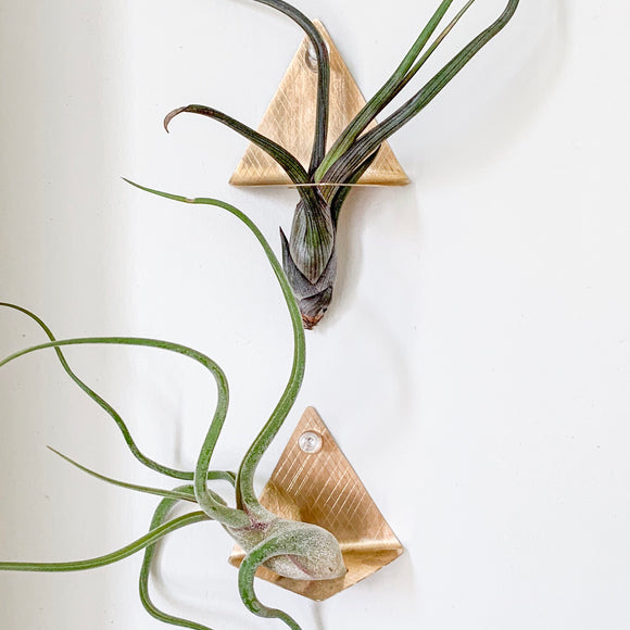 handmade brass decoration for air plants