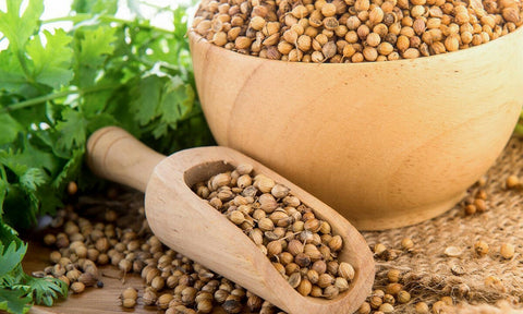 Coriander Whole Seeds