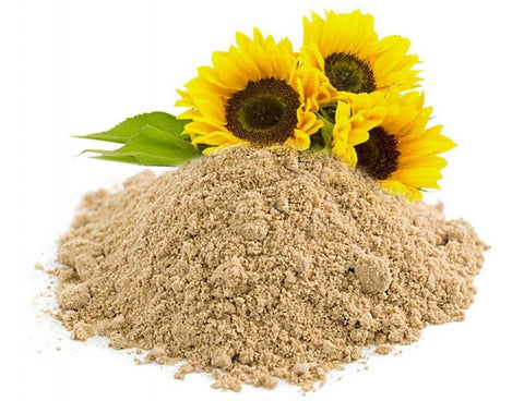 Sunflower Lecithin Powder