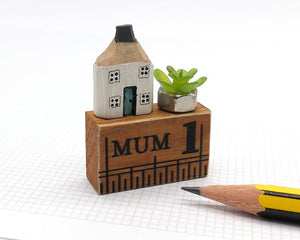 Miniature Wooden House in Gift Box - Little Pencil House and Plant on Ruler - Gift for MUM, Choice of Colours