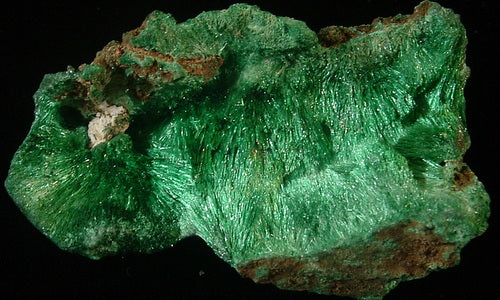 Fibrous Malachite - Katanga Province Democratic Republic of Congo - MS-2754a