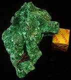 Fibrous Malachite - Katanga Province Democratic Republic of Congo - MS-2754c