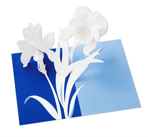 Pop-up Iris Notecard