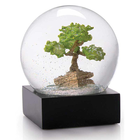 "Bonsai ""Snow"" Globe"