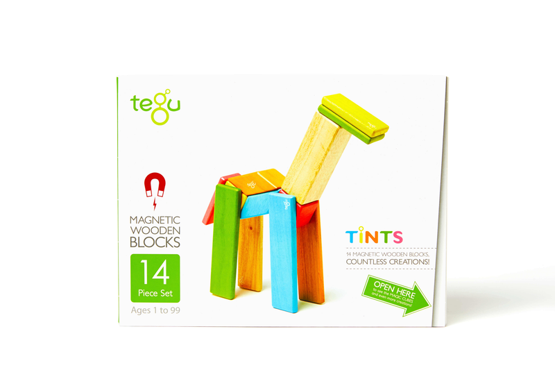 Tegu 14 Piece Magnetic Wooden Block Set Tint