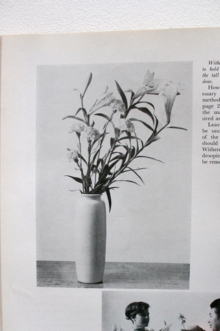 Ikebana - 'Ikebana Guide Book For Beginners'