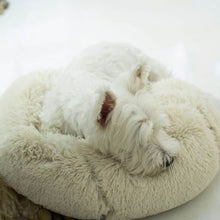 Load image into Gallery viewer, Dog/Cat Bed Comfortable Donut Round Ultra Soft Washable 5 Colors