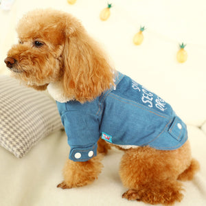 Dog/Cat Clothes Costume English Lettered Cowboy Cotton-padded Warm Small and Medium Fold-down Collar Clothes
