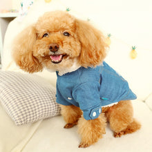 Load image into Gallery viewer, Dog/Cat Clothes Costume English Lettered Cowboy Cotton-padded Warm Small and Medium Fold-down Collar Clothes