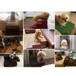 Pet Dog/Cat Stairs Steps 3 or 4 Step Layers Indoor Stairs