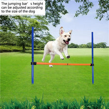 Load image into Gallery viewer, Dogs Games Exercise Training Equipment 2 styles