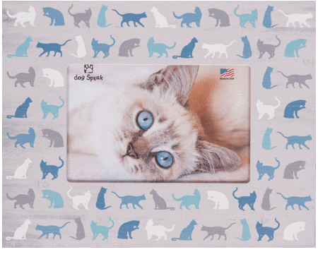 All Over Cat Icons Frame