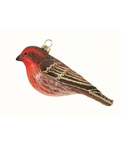 Cobane House Finch C426