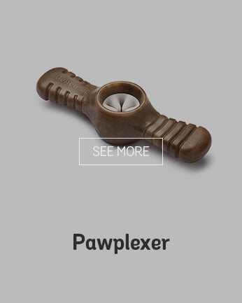 Benebone Pawplexer Medium Bacon