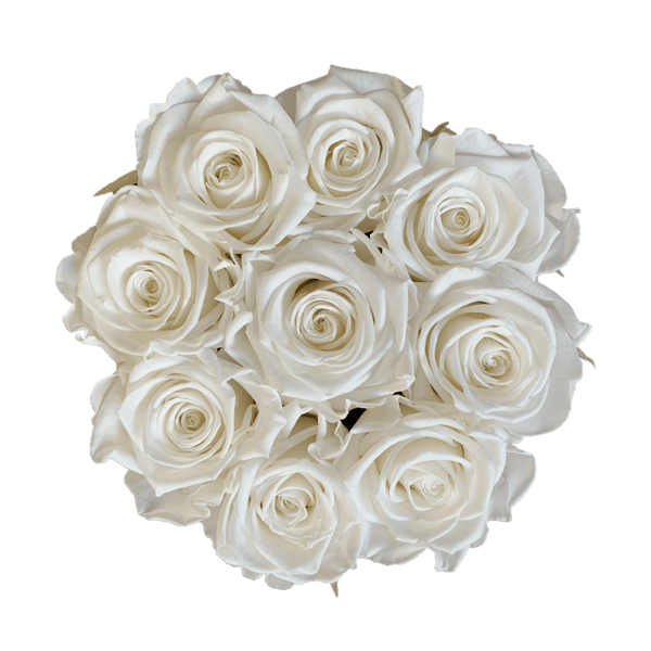L'AMOUR PURE WHITE | MADEMOISELLE COLLECTION-rosebox-Le Musthave