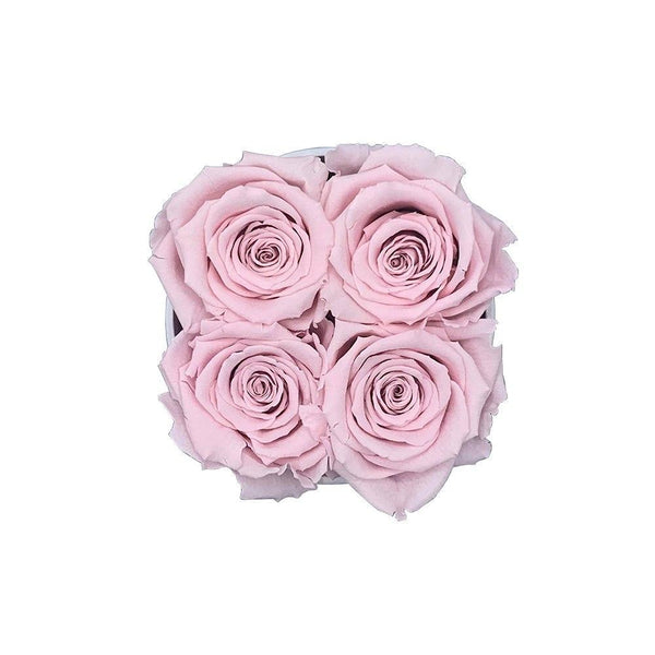 LE PETIT PRETTY PINK | THE CLASSIC COLLECTION-rosebox-Le Musthave