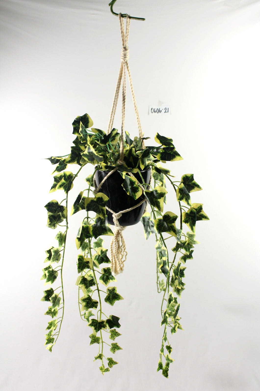 Hanging English Ivy Macrame