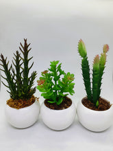 Load image into Gallery viewer, 3-in-1 Artificial Succulent Home Plant