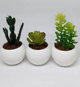 3-in-1 Artificial Succulent Home Plant