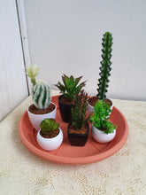 Load image into Gallery viewer, Succulents Arrangement