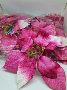 BUY 1 TAKE 1 Poinsettia Sale Per Dozen (20cm)