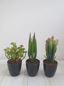 Large Artificial Succulents and Plants