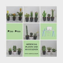 Load and play video in Gallery viewer, Large Artificial Succulents and Plants