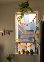 Load image into Gallery viewer, upcycled fruit garland decor bruized gigil