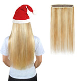 Halo Human Hair Extensions For Extra Length & Volume Multi Color Full Volume All Shades
