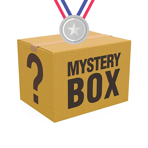 SILVER LEGO Mystery Box ($75 Minimum Value)