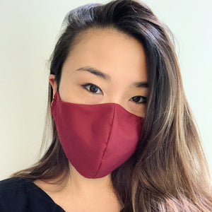 Burgundy/Navy Face Mask with Filter