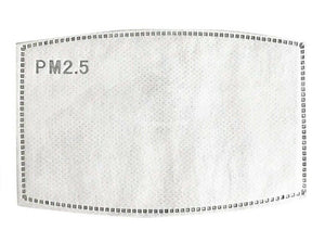 PM2.5 Filter for Face Mask