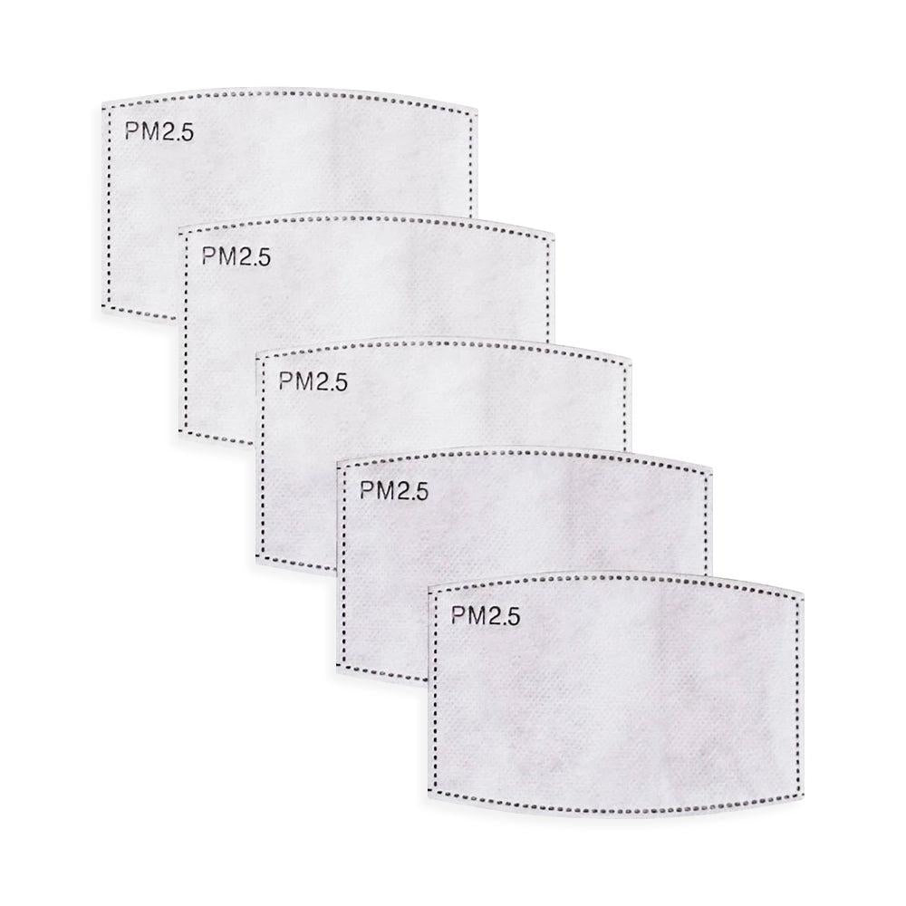 PM2.5 Filter for Face Mask (Pack of 5)