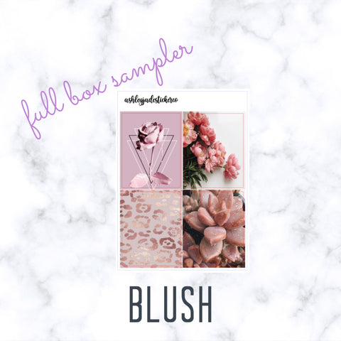 BLUSH - Full Box Sampler | Erin Condren Life Planner, Happy Planner