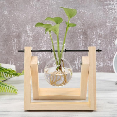 Transparent Glass Planter - Wood Frame