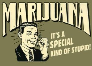 MARIJUANA - IT'S A SPECIAL KIND OF STUPID Sticker