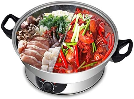 Galaxy Tiger 2 in 1 Electric Hot Pot / Steamboat SET-500N