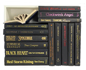 Assorted Black - 3 Feet of Books