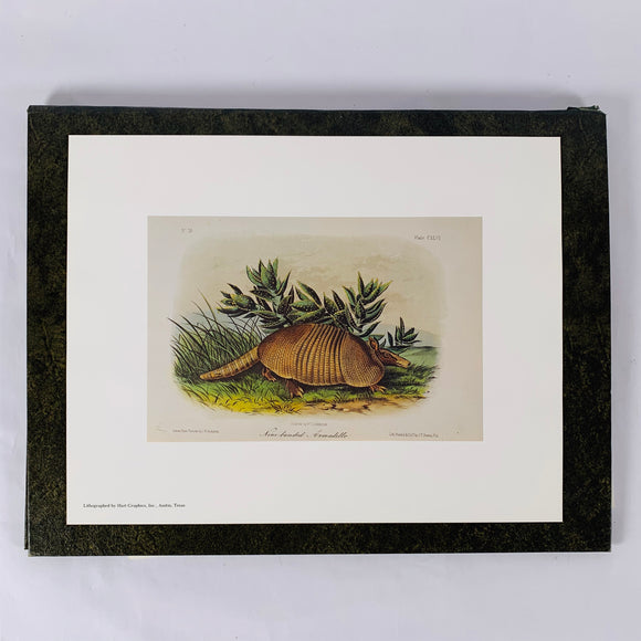 Hart, Mary Bell. Audubon's Texas Quadrupeds [signed limited edition]