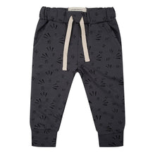 Afbeelding in Gallery-weergave laden, Sample Pants Firework - Iron