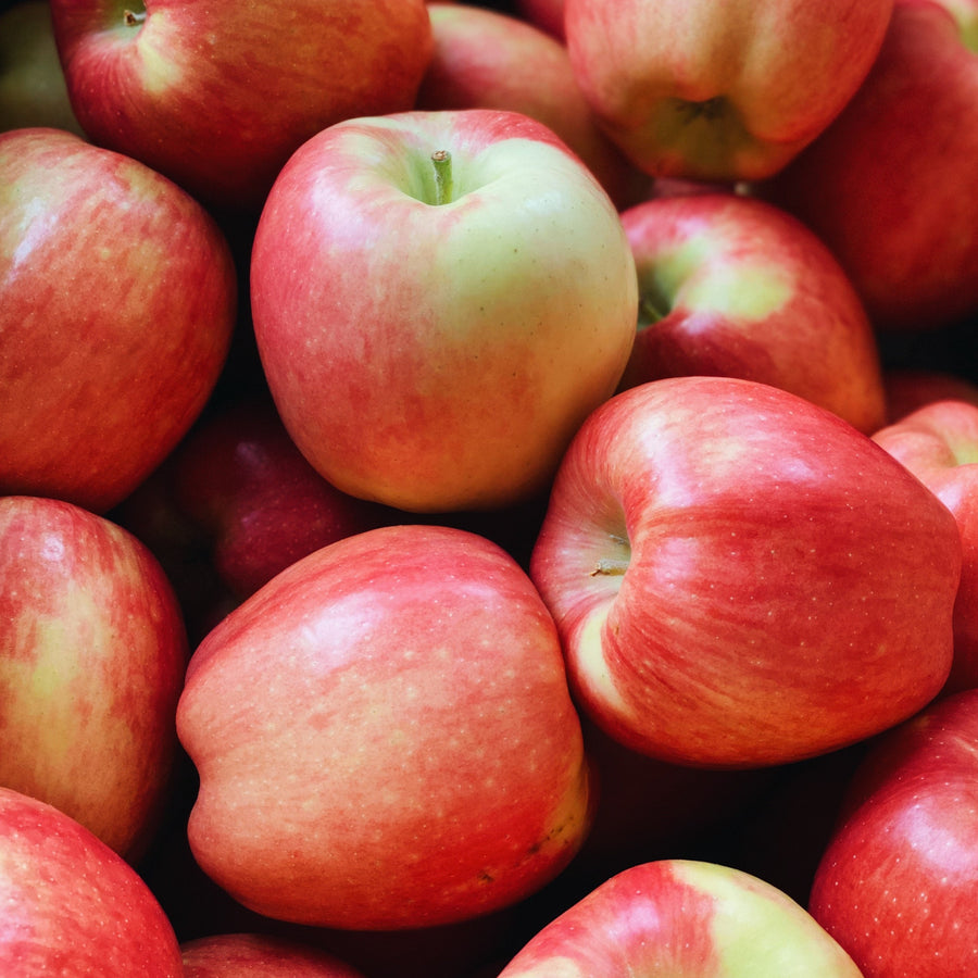 4 Pack Organic Ambrosia Apples