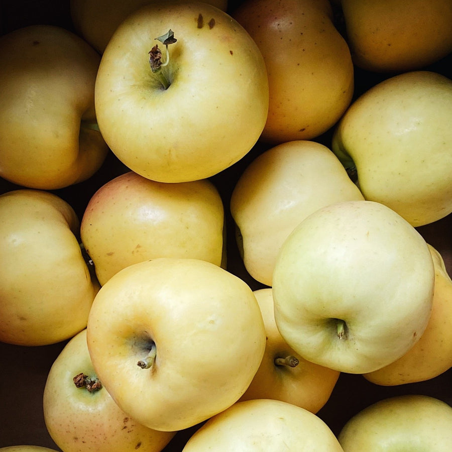 4 Pack Aurora Golden Gala Apples