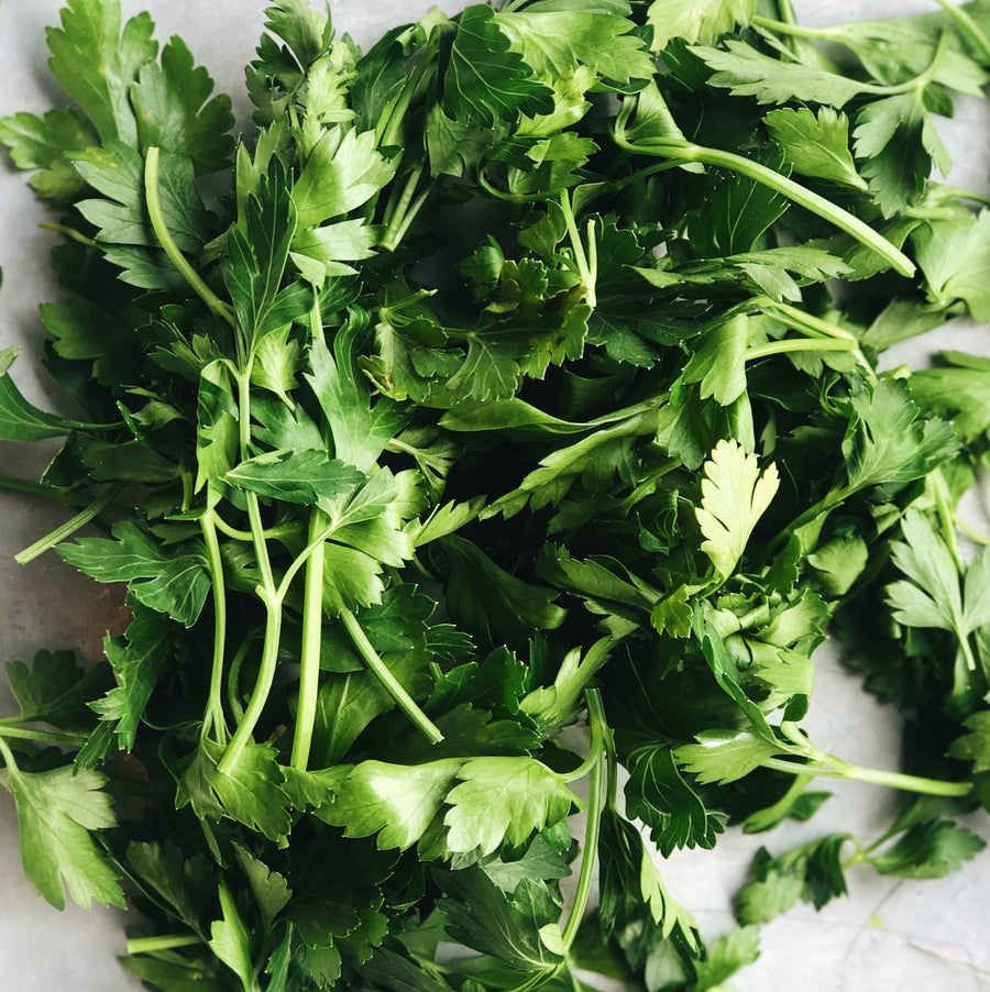 Organic BC Italian Parsley