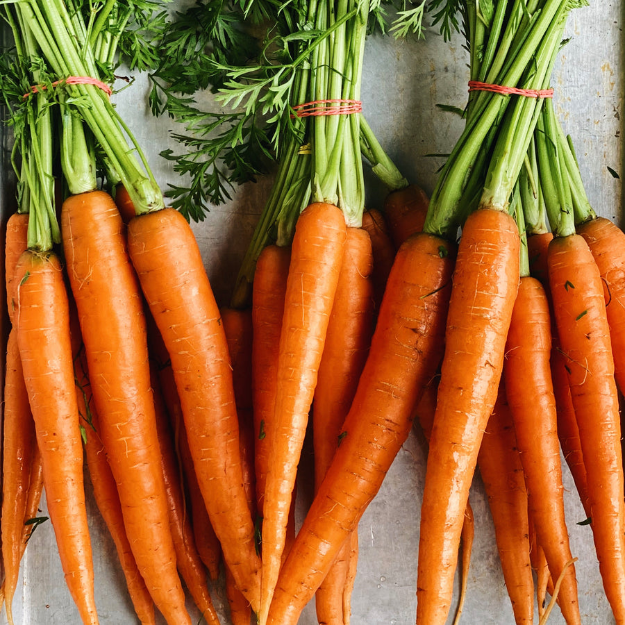 Local Carrots Bunch